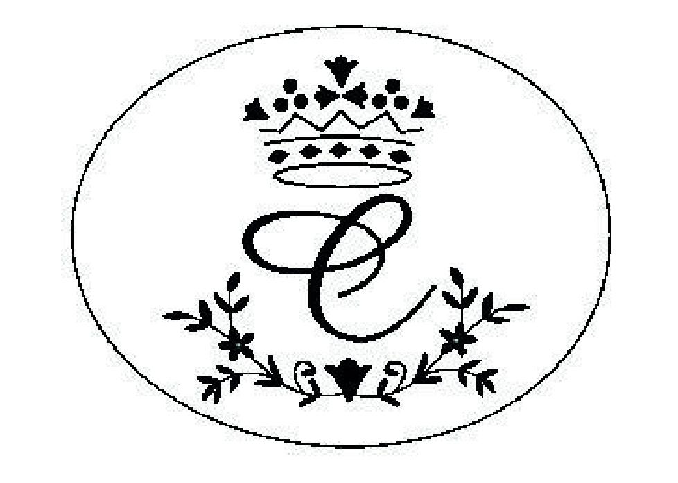 Logo caroussel-20